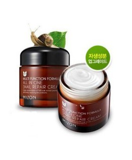 Mizon Multi Function Formula All in One Snail Näokreem 75ml