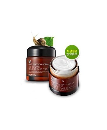 Mizon Multi Function Formula All in One Snail Repair Cream 75ml